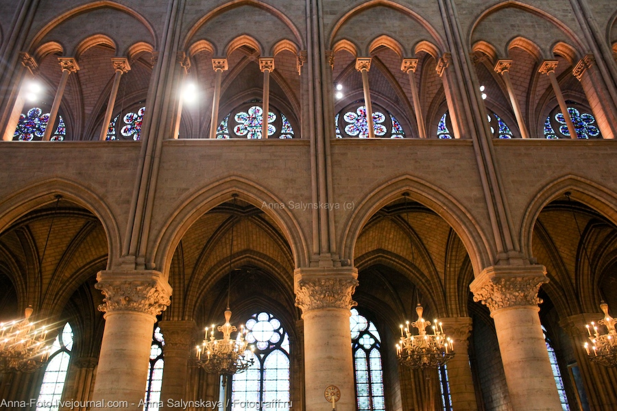 парижский собор богоматери фото